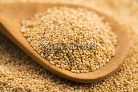 white, poppy, seeds - 14048165