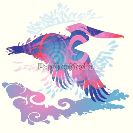 flying, pelican - 14050053