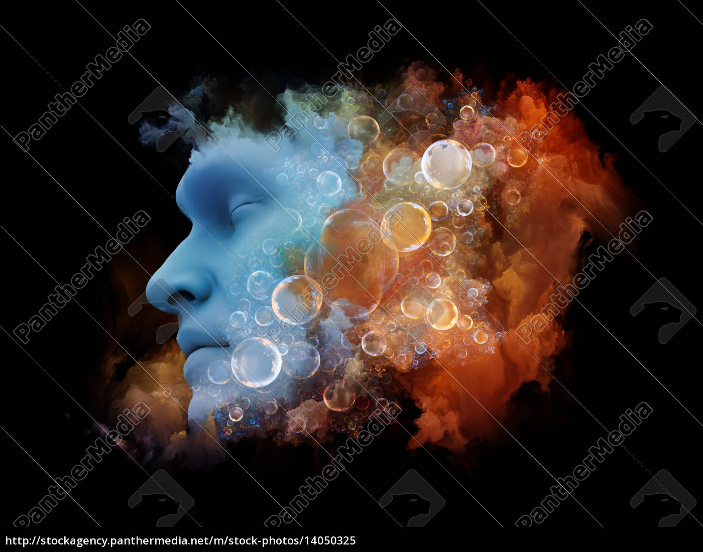 metaphorical, dream - 14050325