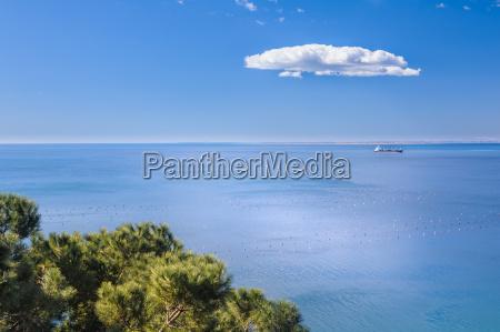 green andblu marine scene