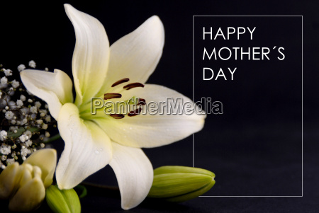 happy, mothers, day, gift, card - 14051243