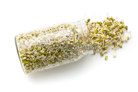 sprouted, mung, beans - 14054501