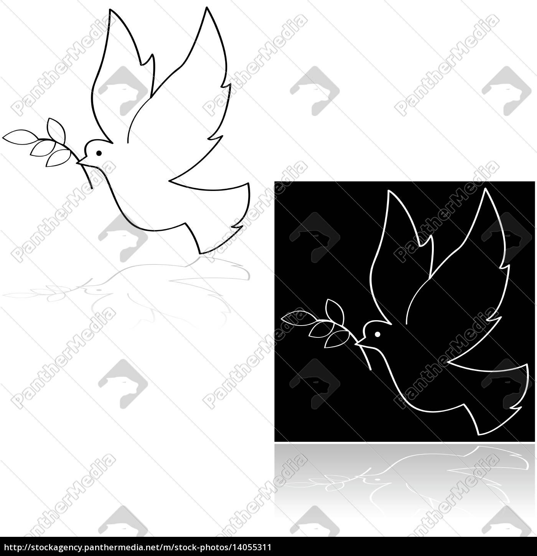 peace, dove - 14055311