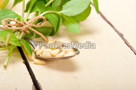 arab, traditional, mint, and, pine, nuts - 14056181