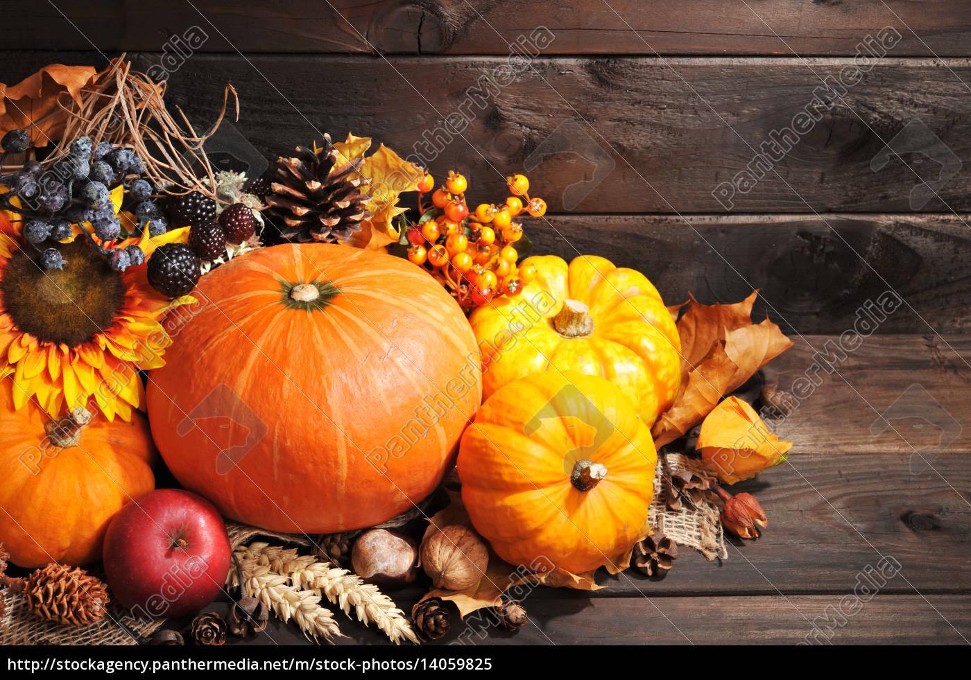 pumpkins - 14059825