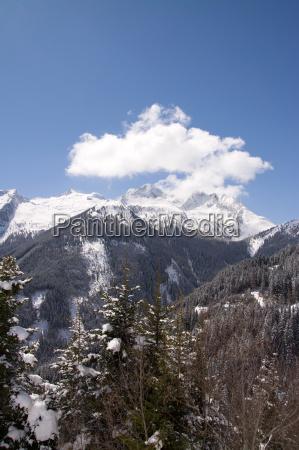 pinzgau, austria - 14061885