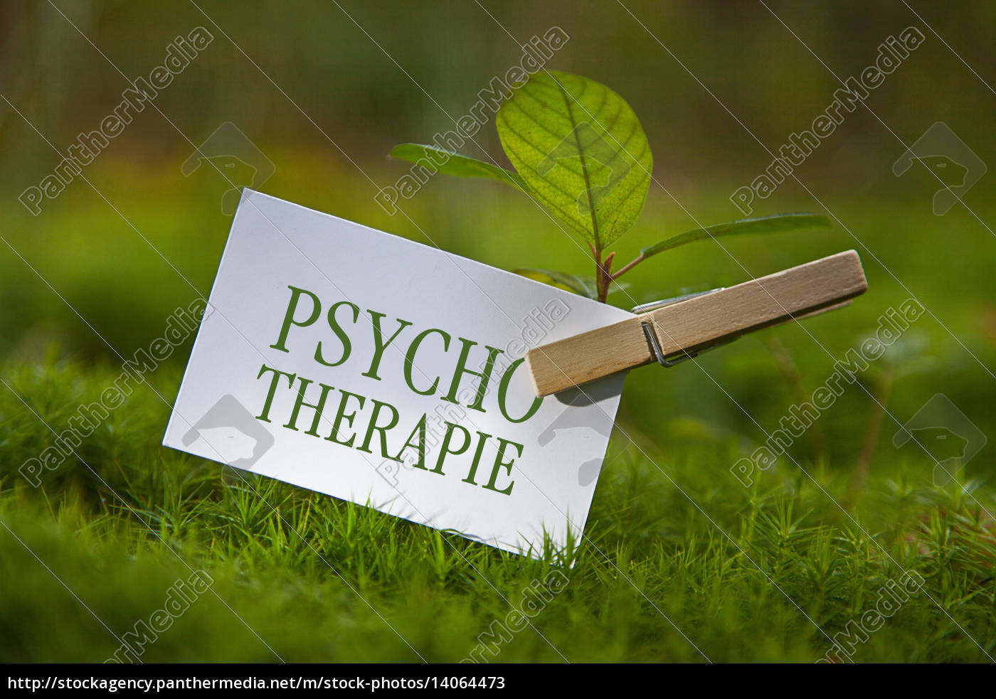psychotherapy - 14064473
