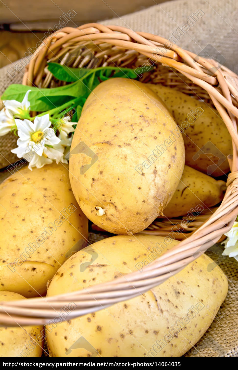 potatoes, yellow, with, flower, in, basket - 14064035