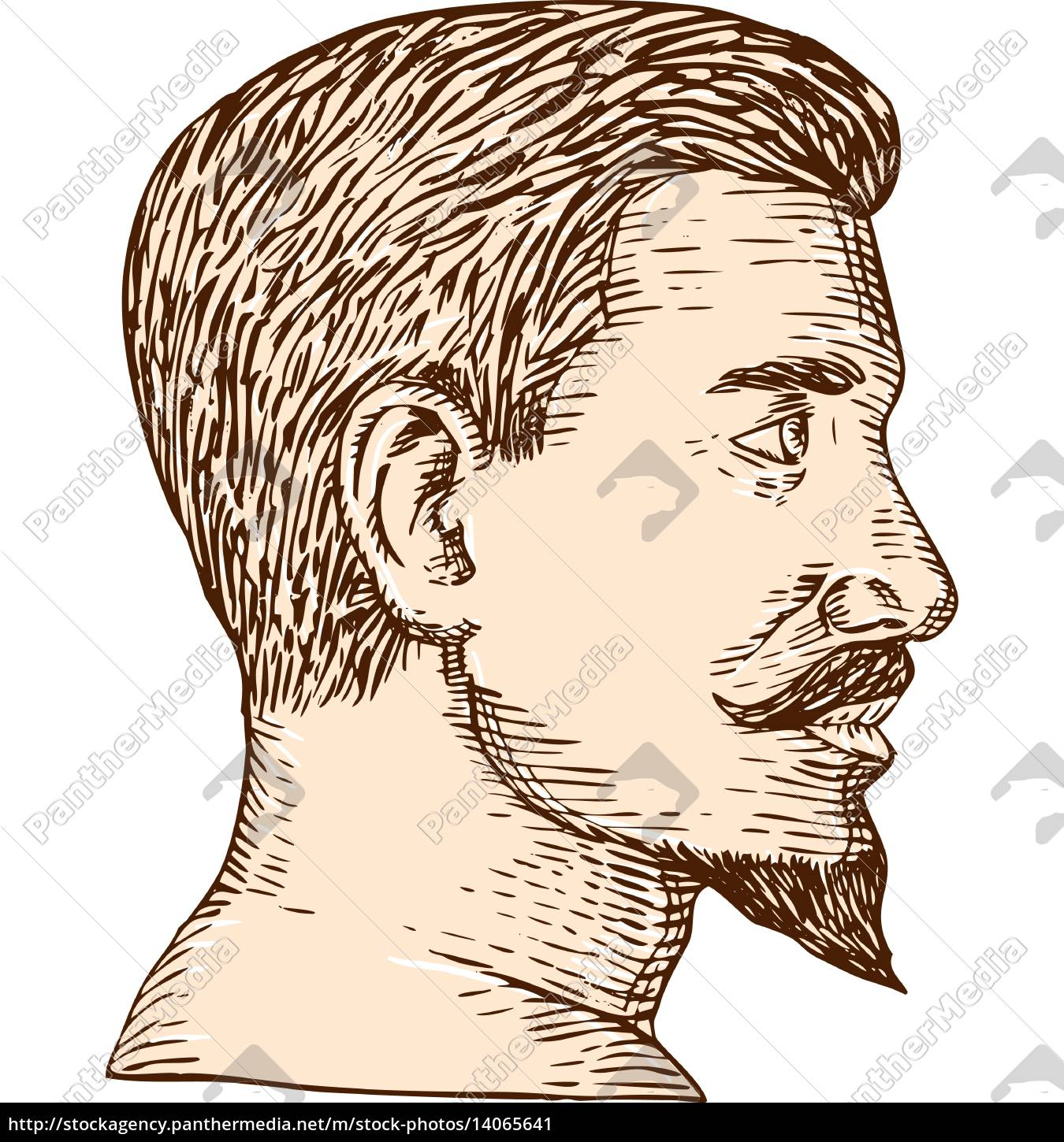 male, goatee, side, view, etching - 14065641