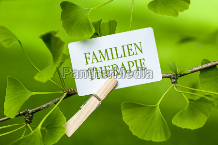 family, therapy - 14067437