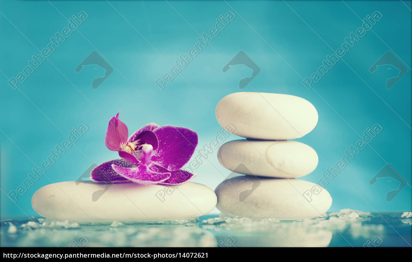 spa, still, life, with, pink, orchid - 14072621
