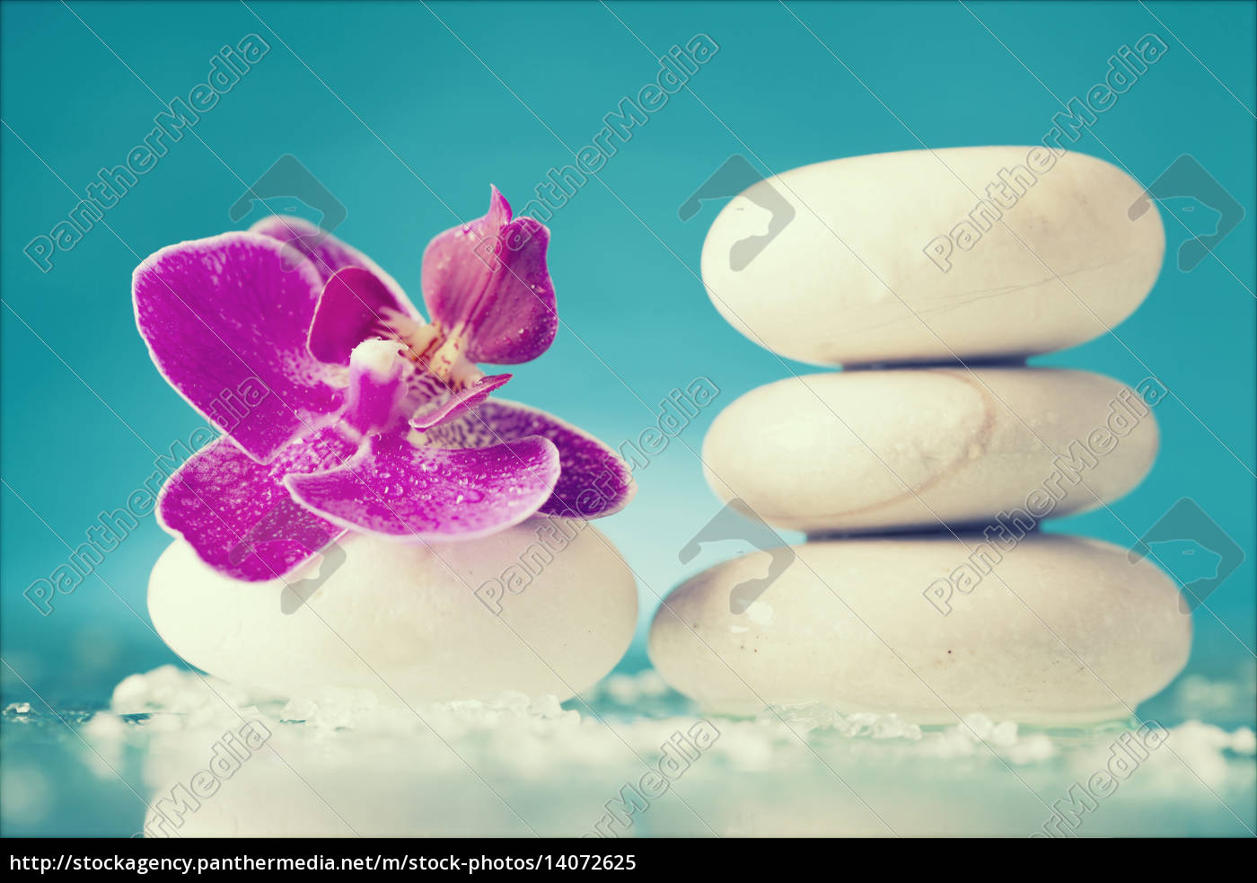 spa, still, life, with, pink, orchid - 14072625