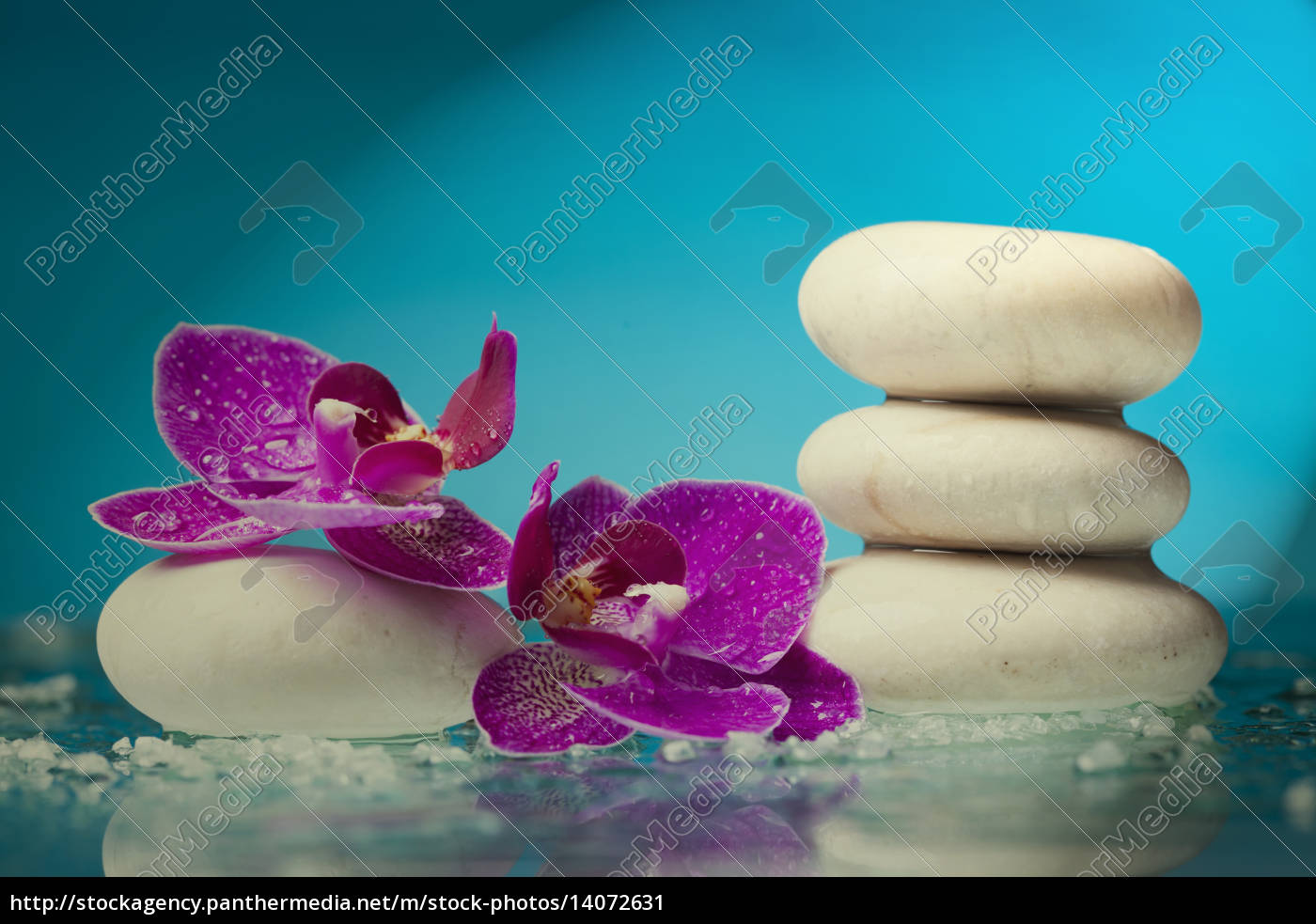 spa, still, life, with, pink, orchid - 14072631