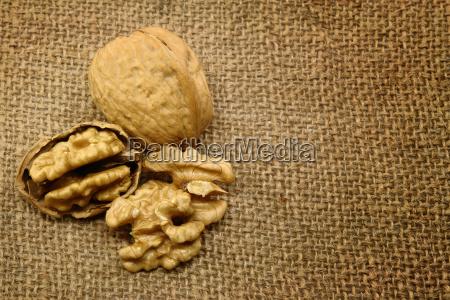 peeled, walnut - 14074433