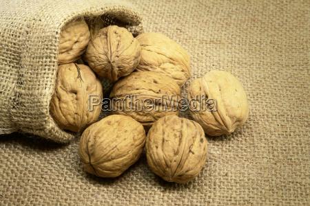 walnuts - 14074445