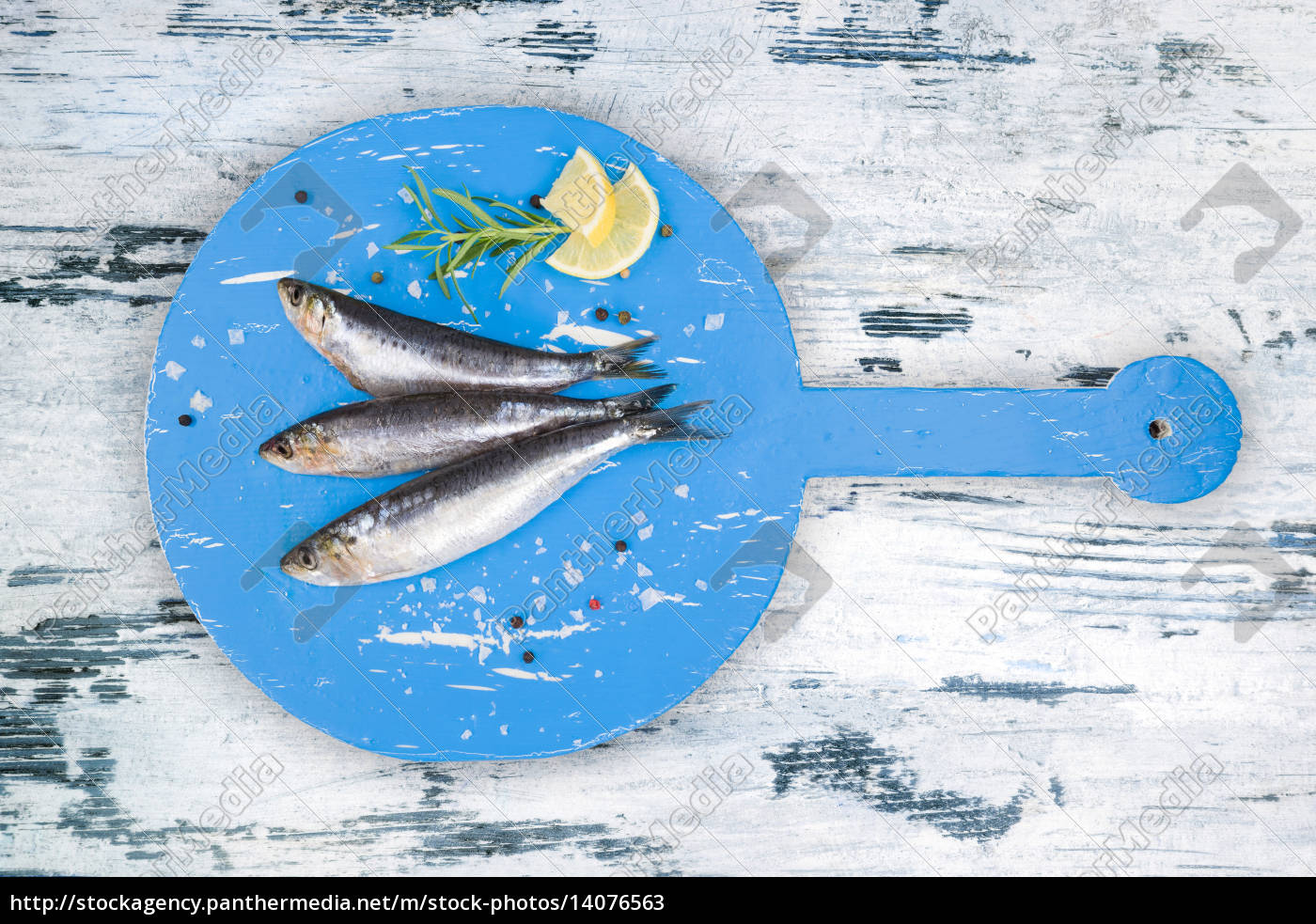 fresh, anchovy, fish, on, white, and - 14076563