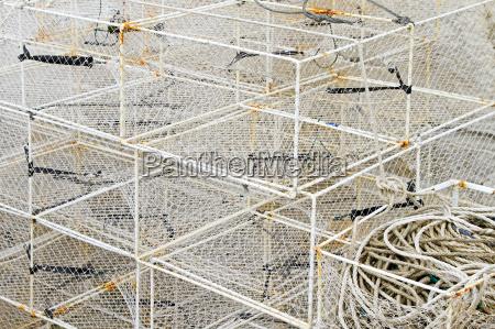 fish traps cage