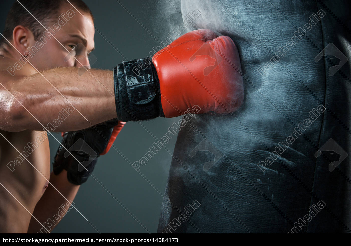 young, boxer, boxing - 14084173