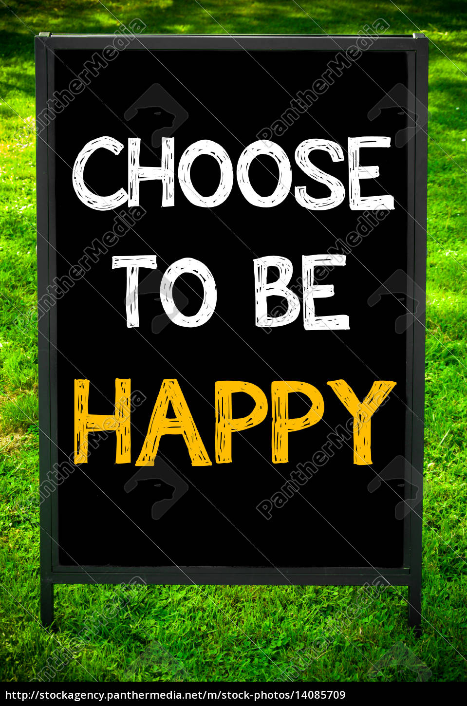 choose, to, be, happy - 14085709