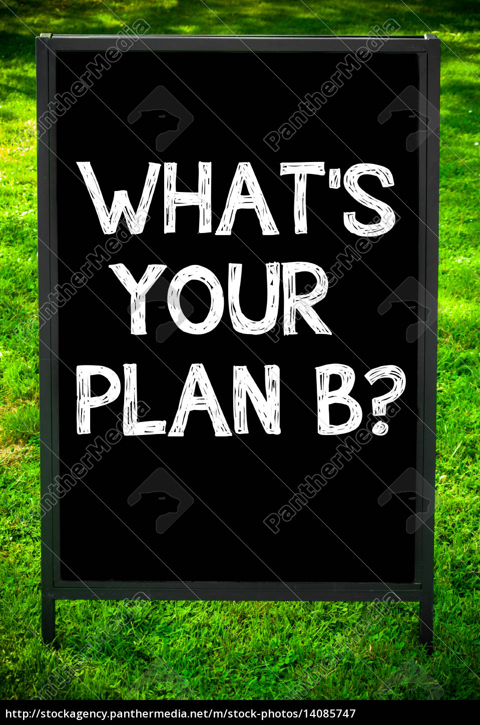 what's, your, plan, b? - 14085747