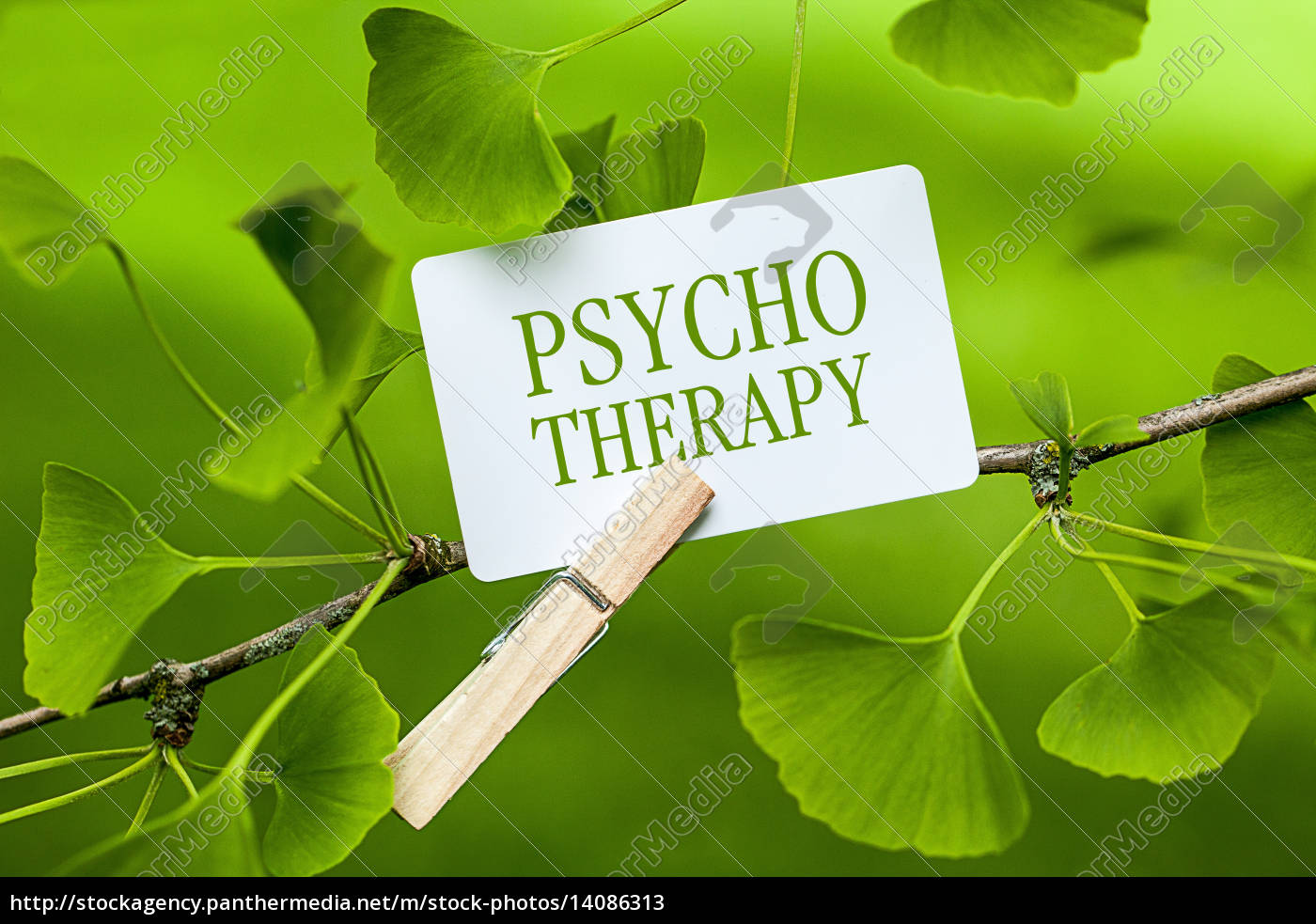 psychotherapy - 14086313