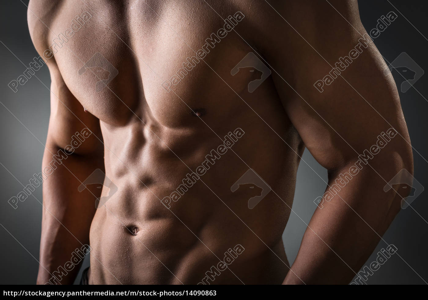 abdominal, and, pectoral, muscle - 14090863
