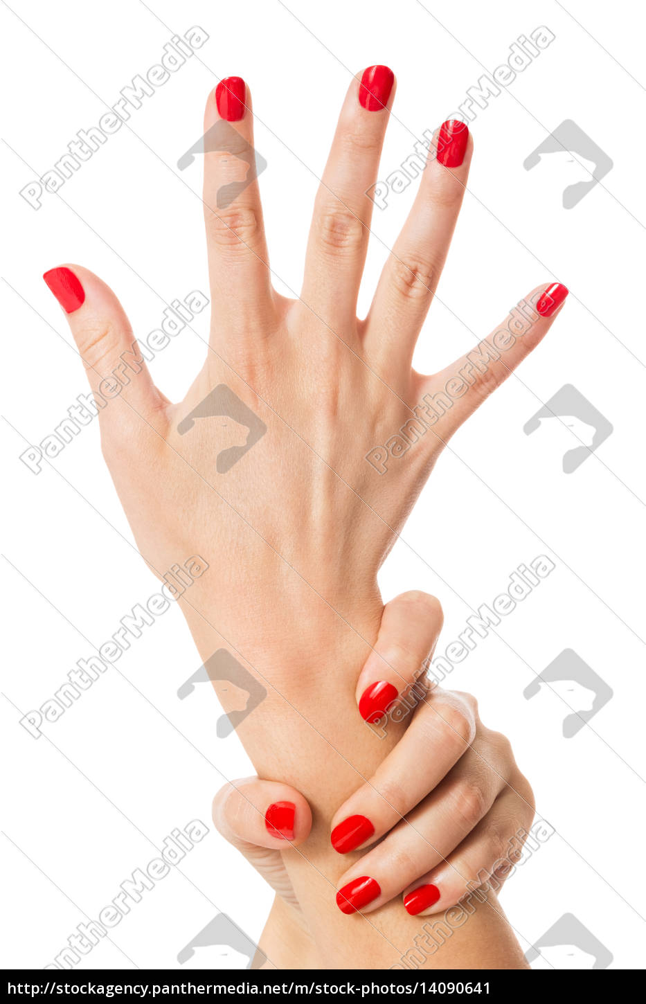 hands, with, beautiful, neat, fingers, and - 14090641