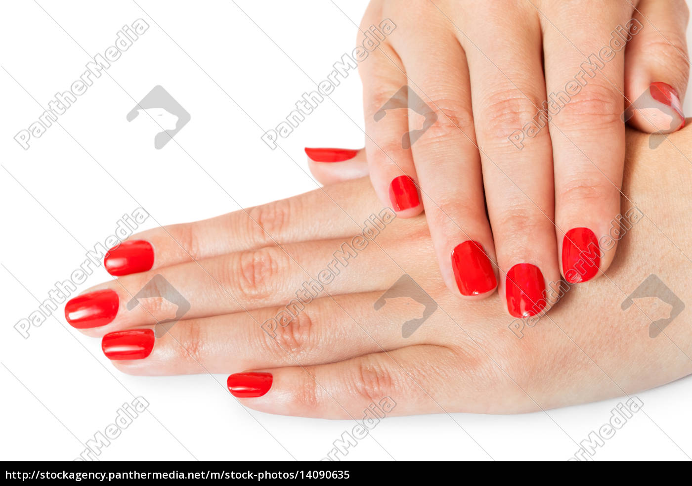 woman, hands, with, beautiful, manicured, fingers - 14090635