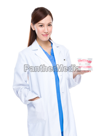 dentist, with, denture - 14093351