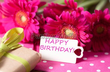 birthday - 14096705