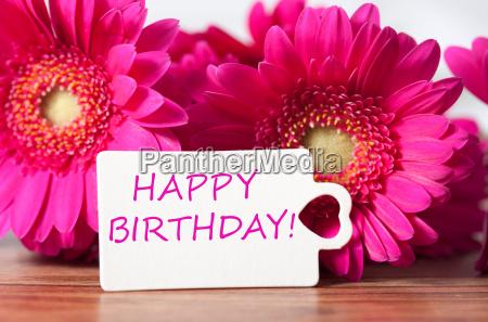 birthday - 14096713