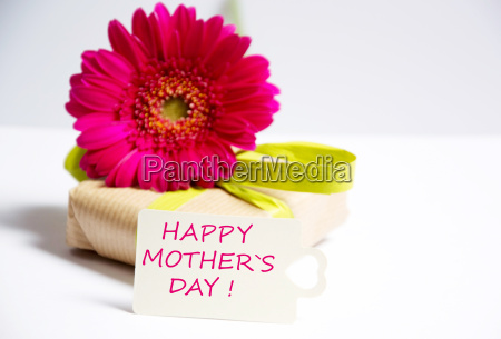 mother's, day - 14096233