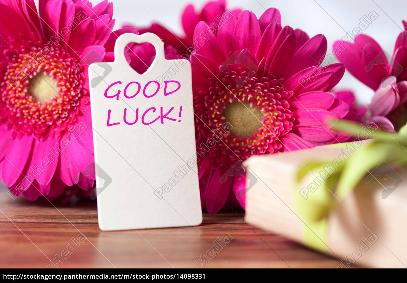 good, luck - 14098331