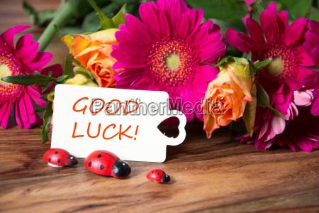 good, luck - 14098449