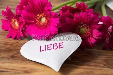 love - 14100689