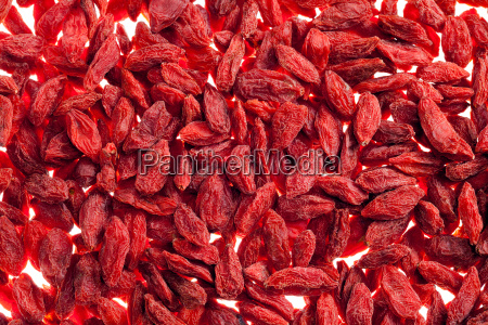 a lot of of red goji