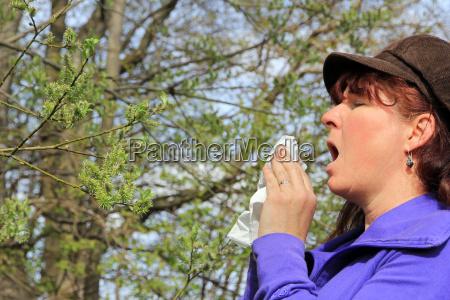 violent sneezing in hay fever a