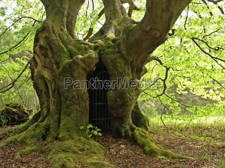 the gateway to the netherworld