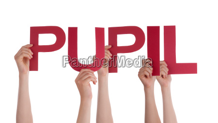 many people hands holding red straight