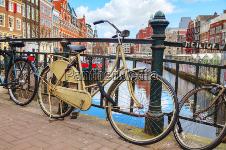 bicycles parked near the floating flower
