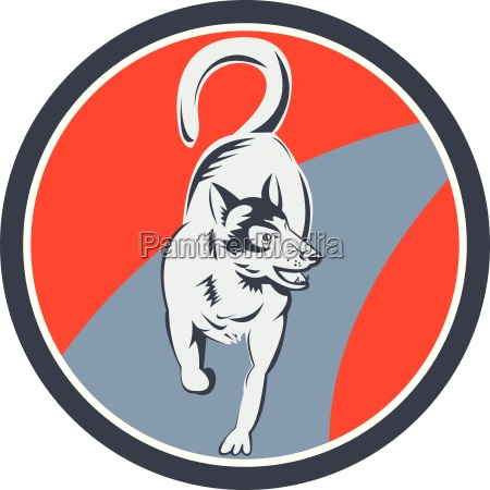 huskie sled dog circle retro