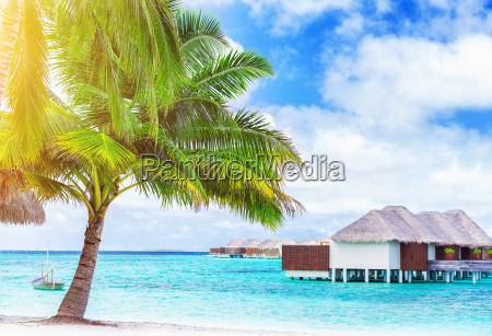 paradise beach landscape