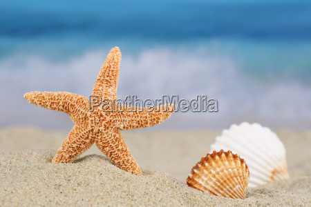 beach scene in summer holidays with