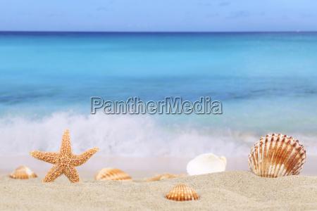 beach scene background in summer holidays