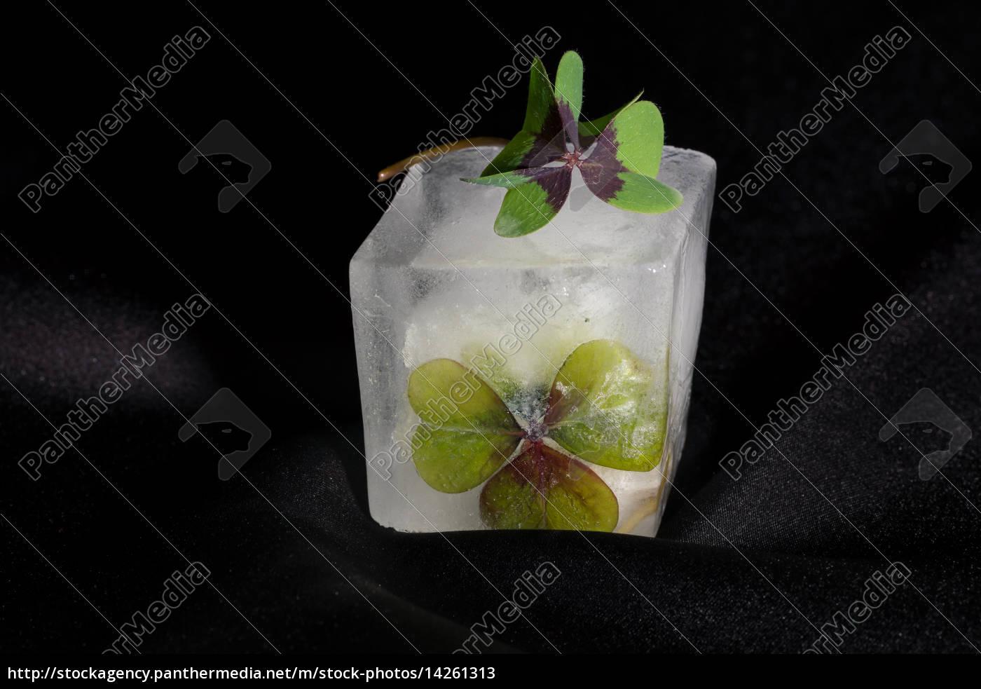 frozen, luck - 14261313
