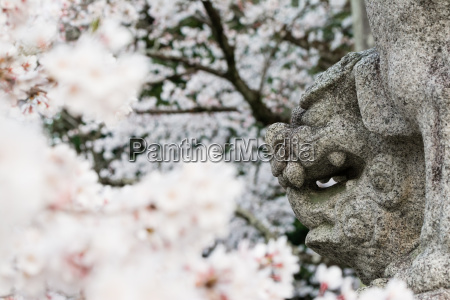 religion kultur trae traeer sten statue