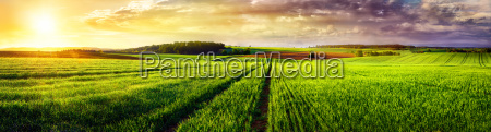 rural landscape sunset panorama