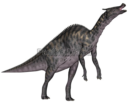saurolophus dinosaur 3d render
