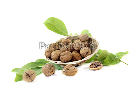 crunchy walnuts with walnut leaves in