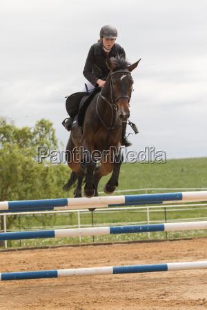 closeup view of beautiful horsewoman on
